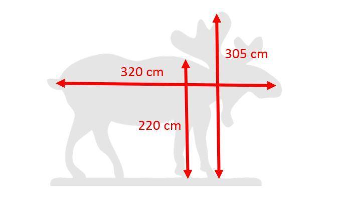 grootte eland